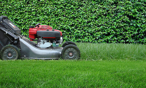 Lawnmower mowing the lawn